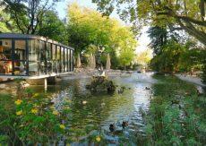 Pond-Rocher-des-Doms-Avignon-France-800x570